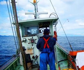漁業体験 image
